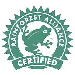 rainforest_a.jpg