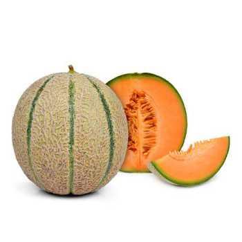 Melon Cantaloupe