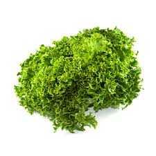 Frillice Salat