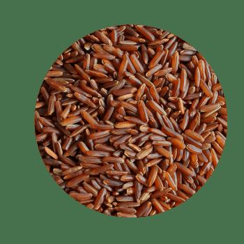 Ris Rød Cargo
