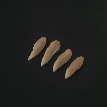 Kyllingeinderfilet Rå – Brasilien