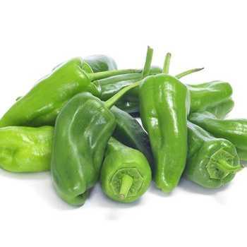Peber Chili Padron øko
