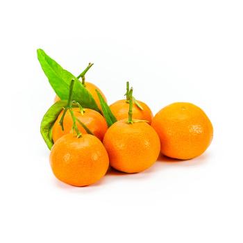 Clementiner